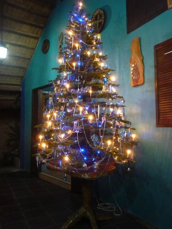 Tuko Beach Resort: X-Mas tree <3