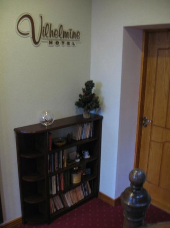 Hotel Vilhelmine: Books in the hall