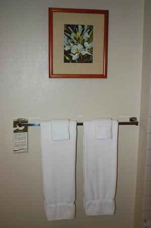 Aston Islander on the Beach: Going green: Leave your towels on the rack if you don't want them laundered.