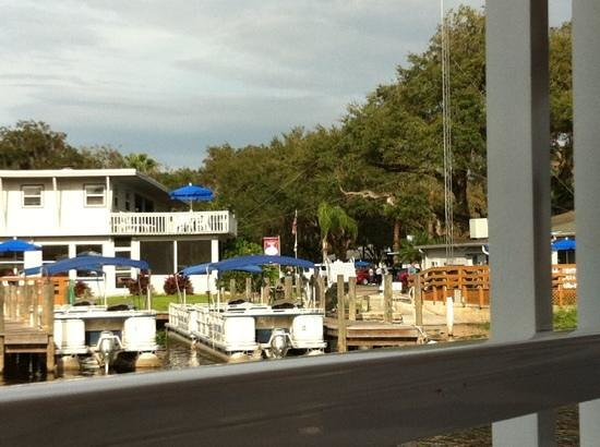 Blue Heron River Tours : Pulling into the dock after the trip.
