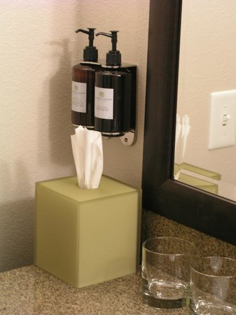 HYATT house Raleigh Durham Airport: hand soap and lotion bottles at bathroom sink