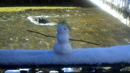 Roan Mountain State Park: Snowman