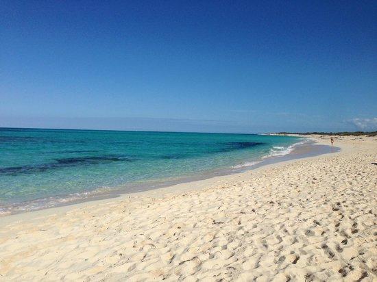 Melia Buenavista: plage est (en partie naturiste)