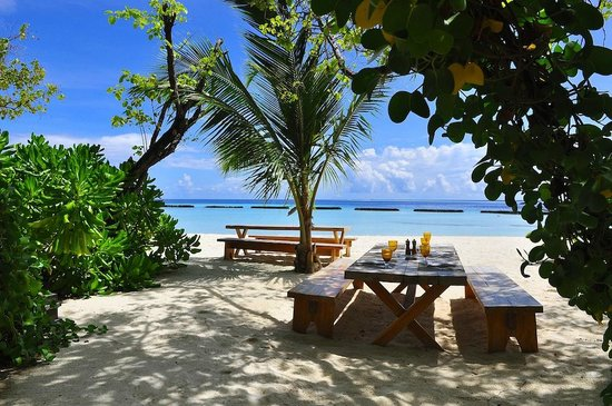 Constance Moofushi: lunch bar