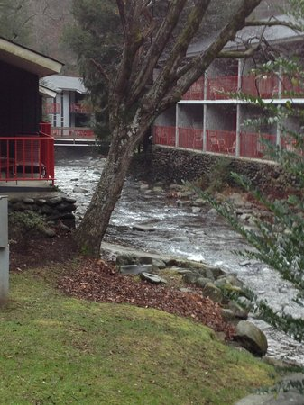 Zoders Inn & Suites :                   Babbling Brook Going Thru The Property