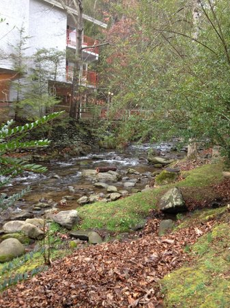 Zoders Inn & Suites:                   Babbling Brook