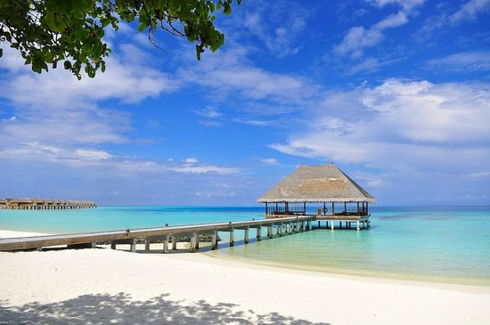 Constance Moofushi: honeymoon jetty (morning and evening yoga) on the left-hand side of our bungalow