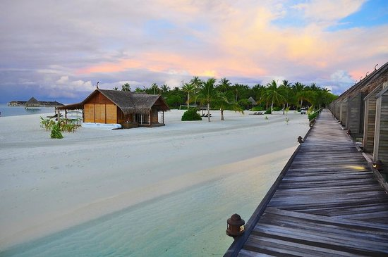 Constance Moofushi: beach house and view from the water bungalow bridge