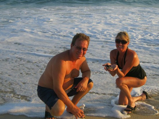 Melia Cabo Real All-Inclusive Beach & Golf Resort:                   Bavaro Beach 2012
