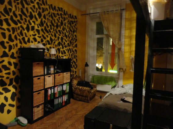 Aventura Boutique Hostel:                   Africa Room