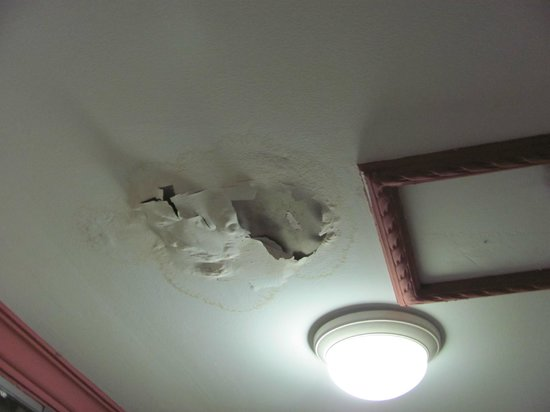Lotus Lodge:                   Unrepaired water damage in first room