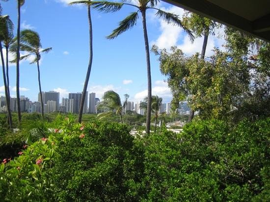 Diamond Head Bed And Breakfast:                   View from room