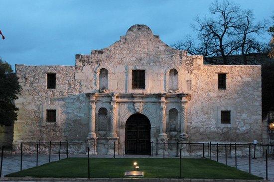 Big Old Tree Picture Of The Alamo San Antonio Tripadvisor