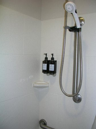 "HYATT house Raleigh Durham Airport: handicap (""assessable"") bathoom shower/bath - can be hand-held"