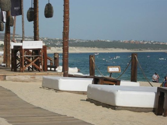 ME Cabo:                   The view from the beach beds