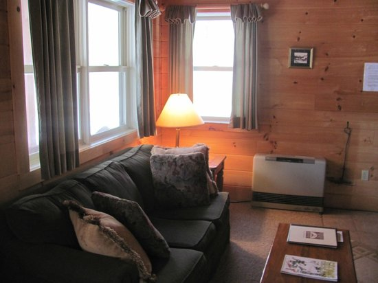 Sterling Ridge Resort: Deluxe cabin living room
