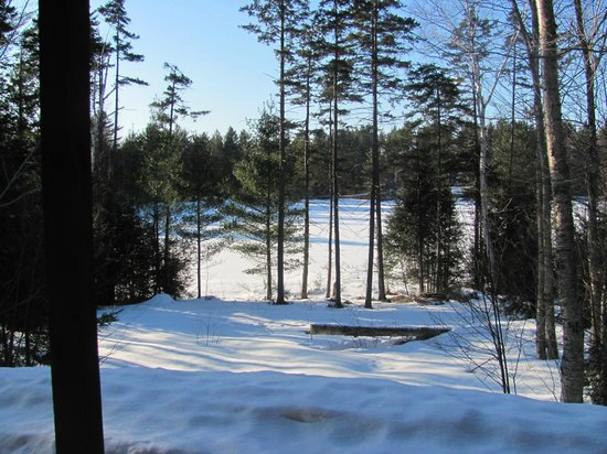 Sterling Ridge Resort: Winter view of the lake