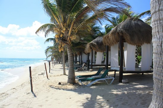 El Dorado Casitas Royale, by Karisma:                   All the cabanas right off the walkway on the upper section of the beach