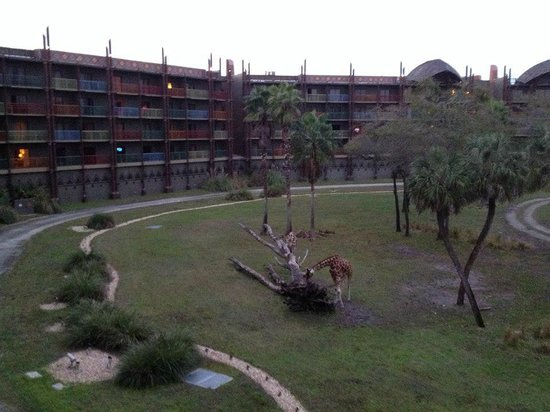 Disney's Animal Kingdom Villas - Kidani Village:                   The hotel
