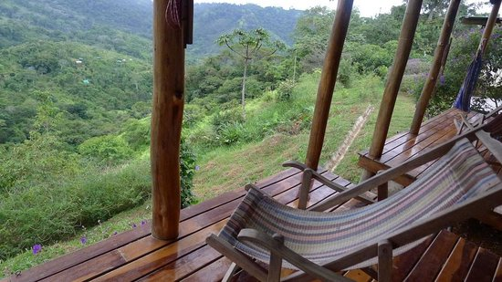 Farm of Life (Finca de Vida):                   View from guest room