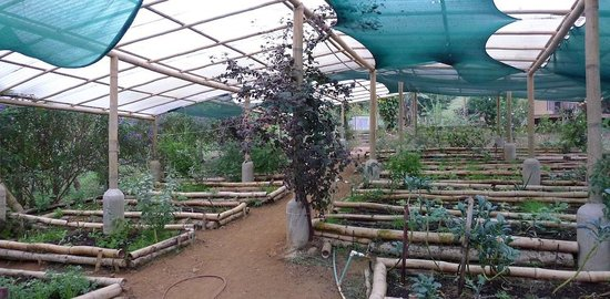 Farm of Life (Finca de Vida):                   The permaculture farm