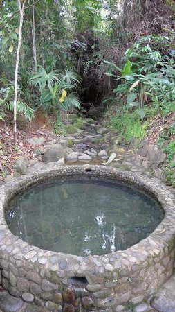 Farm of Life:                   Natural mineral spring bath!