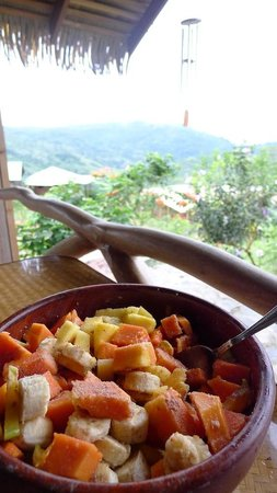 Farm of Life (Finca de Vida):                   Breakfast view