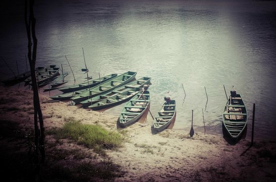 Amazon Tropical Lodge: El Muelle