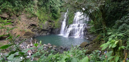 Farm of Life (Finca de Vida):                   Local waterfall