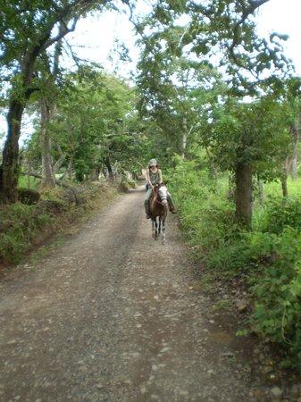 Horse Back riding at the Iboga House