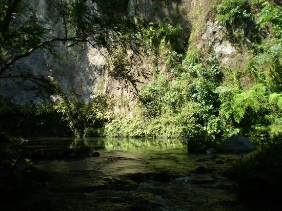 Spiritual Shower River next to the Iboga House