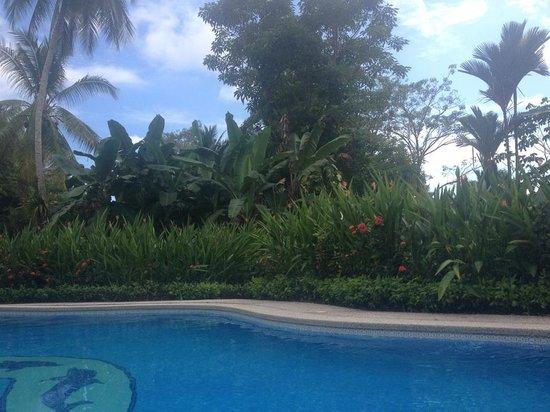Cabinas Espadilla:                   Pool