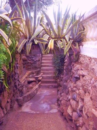 Hotel & Spa Termas Cacheuta: Todo el complejo cuenta con mucha vegetación y terminaciones hechas en piedra