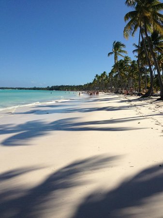 Barcelo Bavaro Beach - Adults Only: Plage