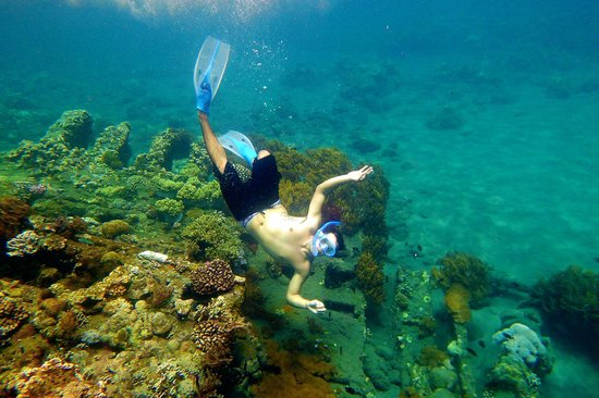 Onlyou Villas: My son snorkeling at Japanese Shipwreck
