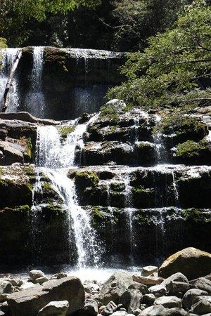 Liffey Falls,Tasmania