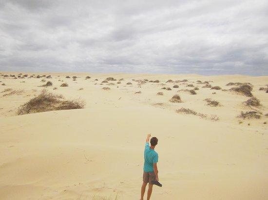 Wanderers Retreat:                   sand dunes very nearby