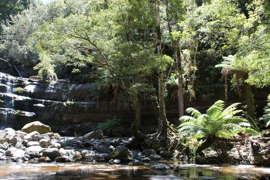 Summer, LIffey Falls, Tasmania