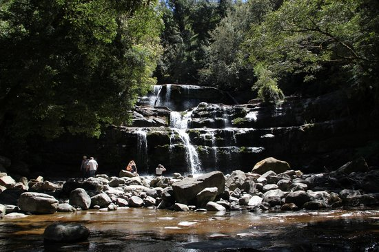 Liffey Falls in summer