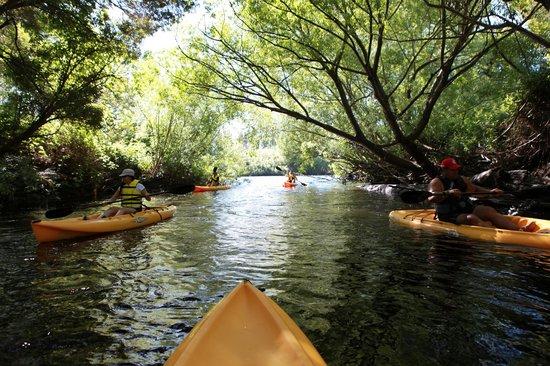 Tassie Bound: Derwent River Tour