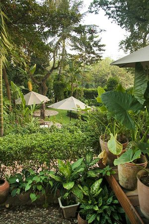 3 Nagas Luang Prabang MGallery by Sofitel:                   View of the garden from our room, in the direction of the Nam Khan river