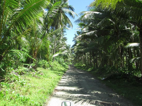 Savaii Lagoon Resort: sightseeing in savaii, took a wrong turn somewhere?