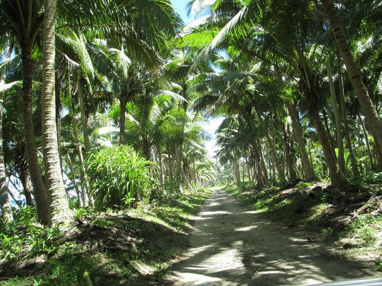 Savaii Lagoon Resort : day trip in Savaii