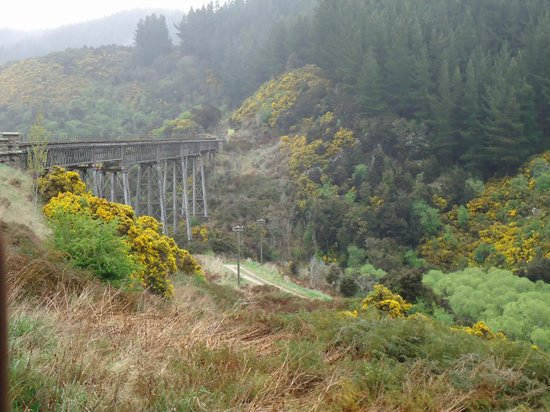 Taieri Gorge Railway: One of the viaducts in the gorge