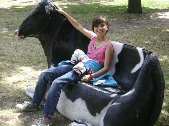 Myuna Farm: Relax on the cowch