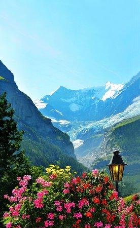 Hotel Gletschergarten: Aussicht