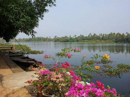 Philipkutty's Farm: The beautiful backwaters