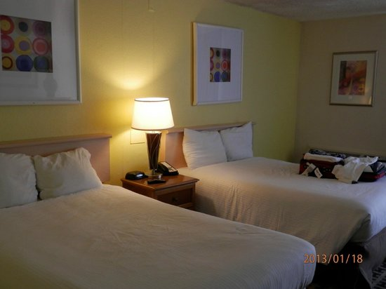 Florida Beach Hotels :                   The beds were made and the linens looked well loved, but clean.