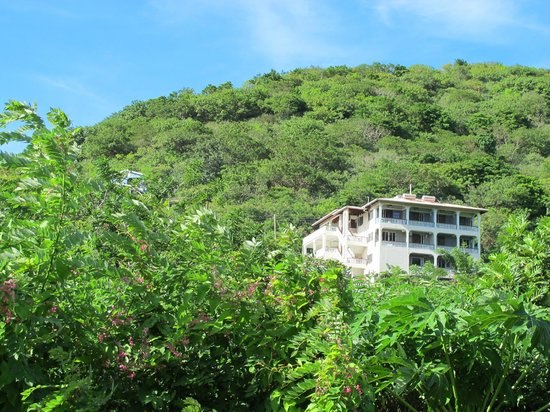Carriacou Grand View:                   GrandView is set into the foliage of the lush hillside.