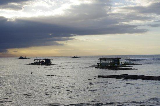Coral Beach Club, Lian: view of beach